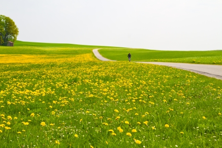country: Spring weide met fietser en landweg Stockfoto