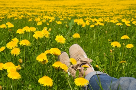 Person relaxing in a spring meadow  photo