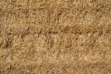 Golden straw in a haystack as background photo