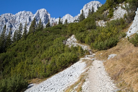 Hiking in the Austrian alps (Zahmer Kaiser Mountains) Stock Photo - 11321160