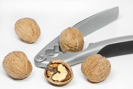 nut cracker: Walnuts with nut cracker on white background