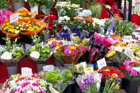 florists: Colorful flowers in a flower shop on a market