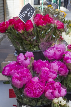 Selection of flowers on display in Paris, France Stock Photo - 14075969