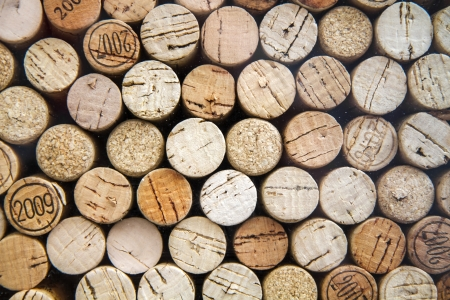 Pattern of wine bottle corks as background, cross sections photo