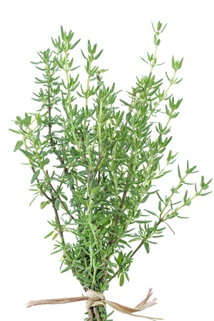 Fresh thyme herb on white background