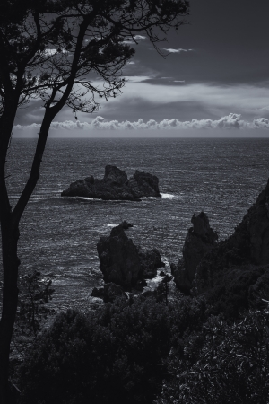 Coastline on the island of Corfu, Greece, in black and white photo
