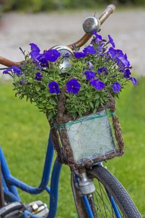 decorated bike: Biciclette d'epoca con i fiori in un cesto Archivio Fotografico