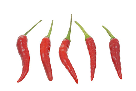Group of red hot chilies isolated on white  photo