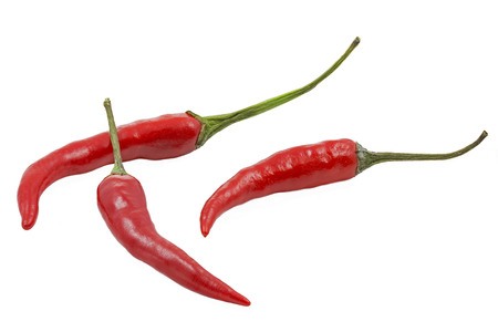 Three red hot chilies isolated on white  photo