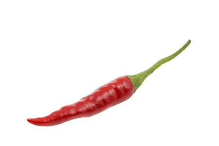 Single red hot chili isolated on white  photo
