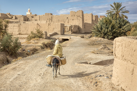 Moroccan old village with donkey and road
