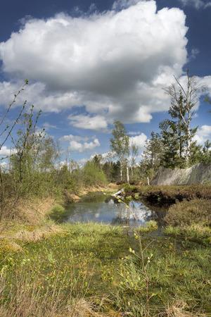 upland: The Nicklheim upland moor in Bavaria, Germany Stock Photo