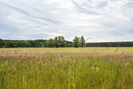 east germany: Rural landscape in East Germany Stock Photo