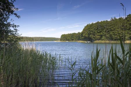 east germany: Bathing lake in East Germany Stock Photo