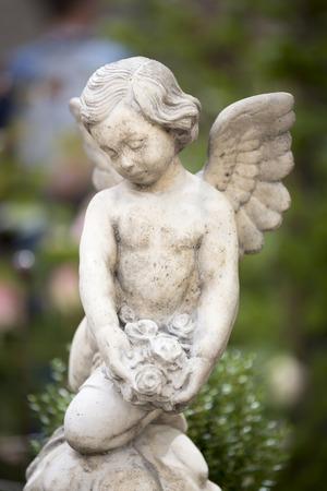 Angelo statua, girato con poco DOF