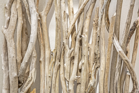 壁にもたれて流木