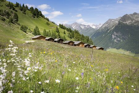 Lobiser Schupfen sheds in the Aurina Valley in South Tyrol, Italy Фото со стока