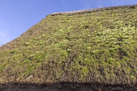 Old thatched roof overgrown with moss