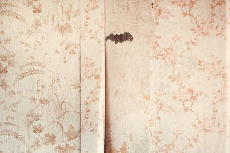 Weathered old wallpaper on a wall as background