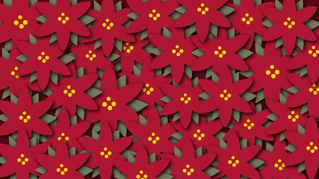 animated pattern flowers christmas star, ideal footage for the christmas period