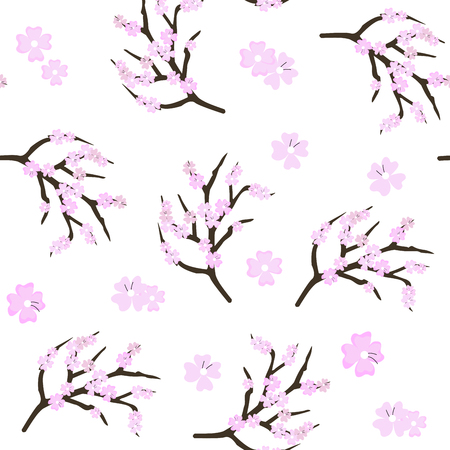 Cherry blossom flowers background. Sakura pink flowers.