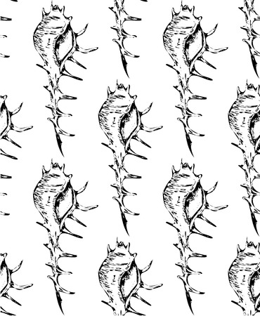Black-white summer seamless pattern with seashells