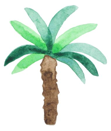 Watercolor palm tree. Beach style hand drawn pattern. Tropic nature