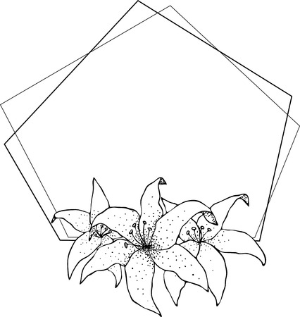 Lily frame, flowers drawing and sketch with line-art on white backgrounds. Silhouette