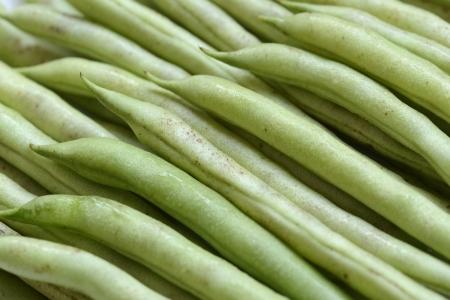 common bean: Common bean close up