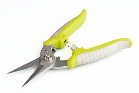 Gardening secateurs for cutting branches on white background