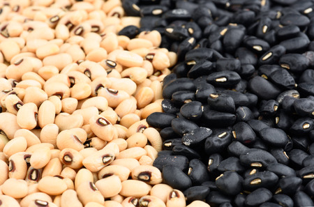 Close-up of bean bacground