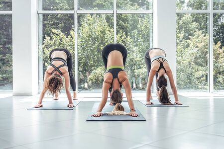 Three fit young women doing the Downward Facing Dog pose on exercise mats. Front view