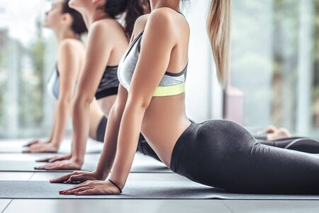 Fitness group doing cobra pose in row at the yoga class. Close up view