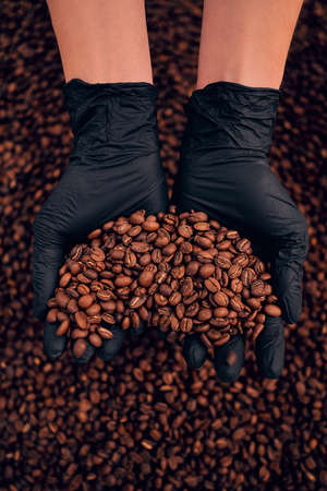 Worker hands holding freshly roasted coffee beans. Vertical photo.