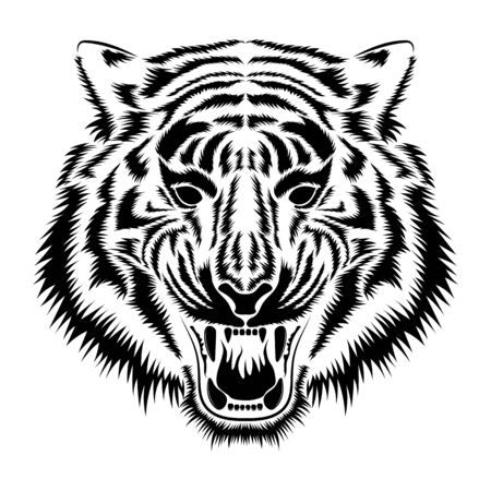 Vector image of a muzzle of a tiger. Çizim