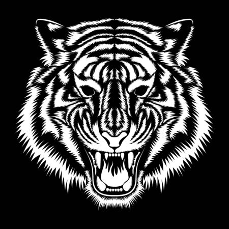 Vector image of a white tiger muzzle on a black background. Stock Illustratie