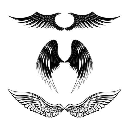 Set of vector images of wings. Image on a white background.