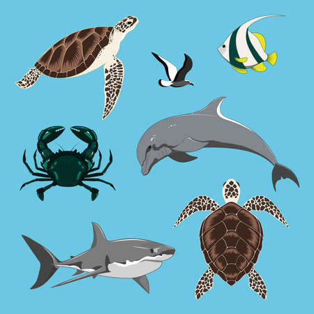 Set of vector images dolphin, turtles, shark, crab, seagull, fish.