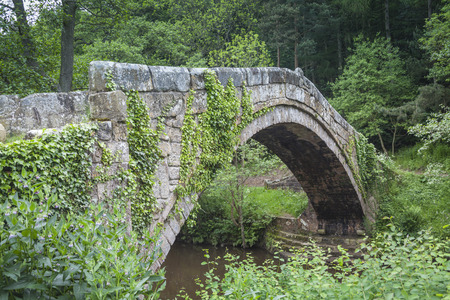 moors: Stone bridge in North York Moors National Park