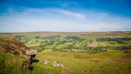 moors: Typical landscape in North York Moors National Park