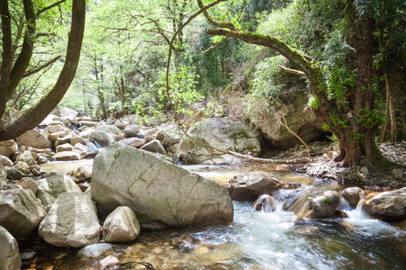 natural landscapes: Natural landscapes of Corsica