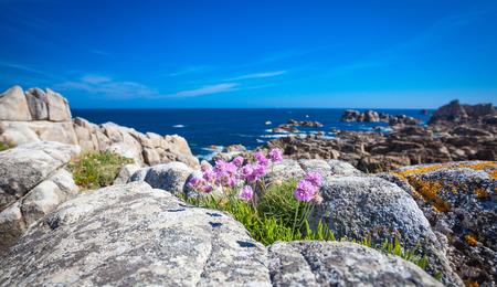 brittany: Plougrescant Cotes granites rose Brittany France Stock Photo