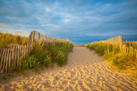 部ブルターニュ地域圏、モルビアン県の砂浜で