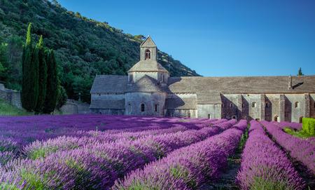 修道院セナンク プロヴァンス フランス 写真素材
