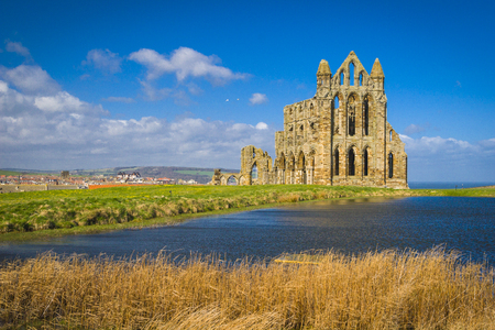 north yorkshire: Whitby Abbey North Yorkshire Stock Photo