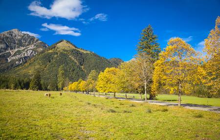 tirol: Karwendel mountains in Tirol in Austria