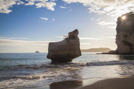 cove: Cathedral Cove Coromandel New Zealand