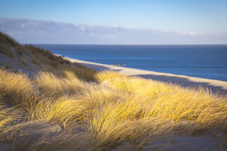 Beach of List Sylt Germany Standard-Bild