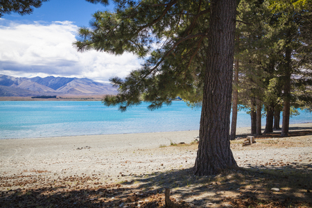 tekapo: At the shores of Lake Tekapo