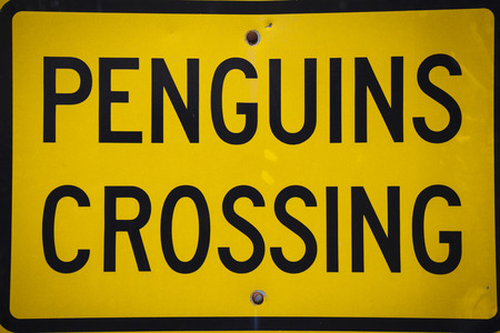 oamaru: Pinguin signs Oamaru New Zealand